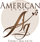 American Ag Video Auction